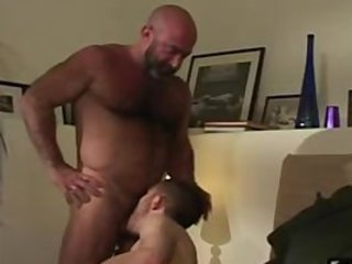 Bald mature hairy bear has fun with horny cub / 2473