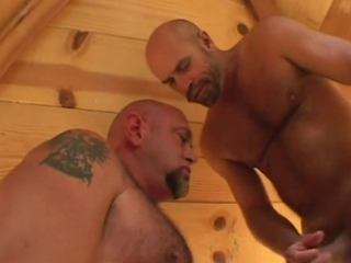 Muscle Bear Sauna Heat / 267