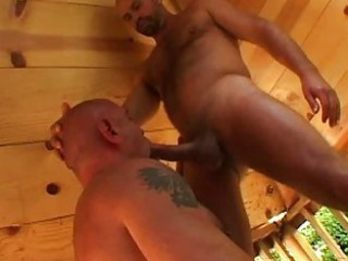 Strong gay bear gives blowjob to his mature lover / 836
