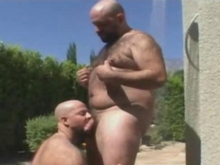 Bear Guys Mating Hardcore / 537